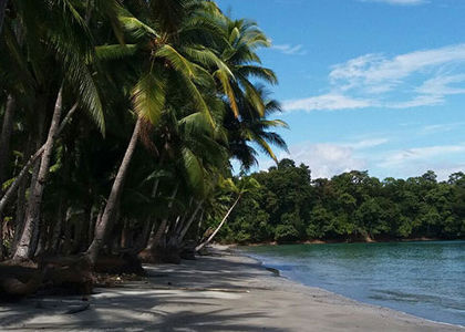 Coiba Island Tours adventure hostel