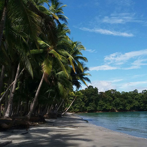 Hannibal Lodge Panama, Adventure Hostel - Coiba Island Tour